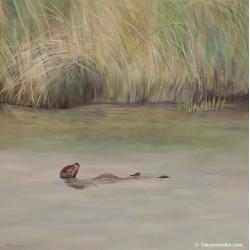 "Marsh Otter - Prints - 16x16"""