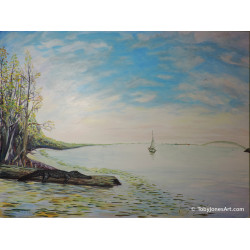 Saint Johns River - Original
