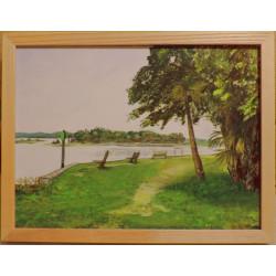 Framed Washington Oaks...