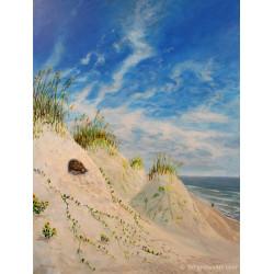Gopher Tortoise in Dunes -...